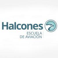 ESCUELA DE AVIACION LOS HALCONES